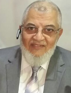 Mr. Ahmed Saeed Eltaliawy